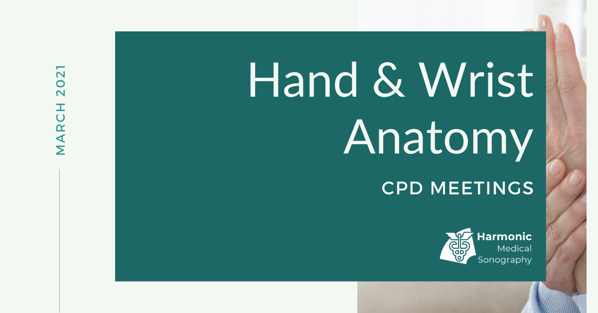 Hand & Wrist Anatomy