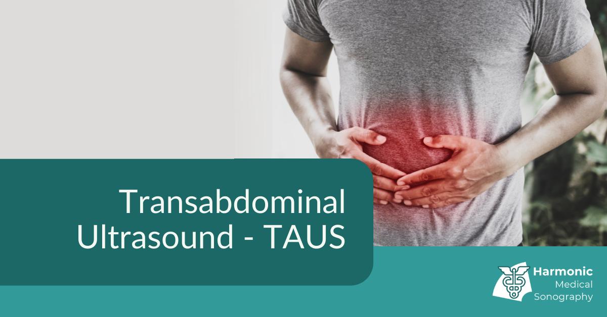 Transabdominal Ultrasound (TAUS)
